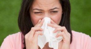 Всичко за алергиите в 16 важни въпроса