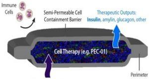 Революционен имплант заменя инжекциите с инсулин