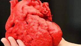Учени създават изкуствено сърце с 3D принтер