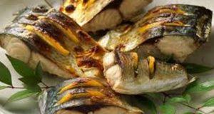 hrani-riba