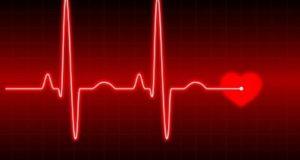 Протеинът винкулин е в състояние да поддържа младостта на сърдечния мускул