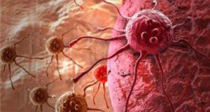 Съединения в морковите борят успешно рака