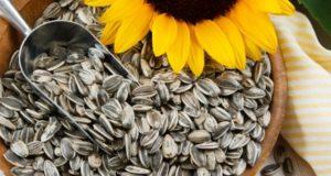 Слънчогледови семки