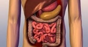 gastroptosa