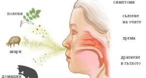 алергия пролет