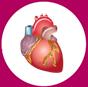 кръвоносна система