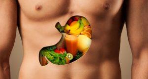 храносмилателната система