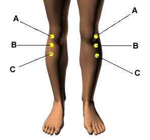 Полиневропатия болка в коляното билки