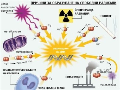 антиоксидантите