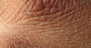 кожата