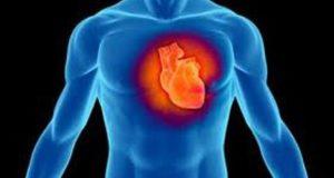 сърцето