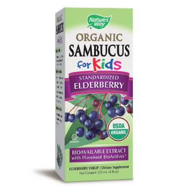 самбукус за деца