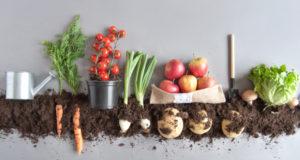 органични продукти