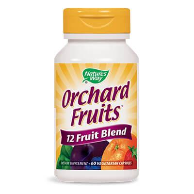 плодов антиоксидант