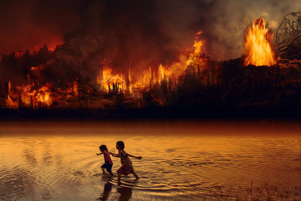 Амазонка пожар