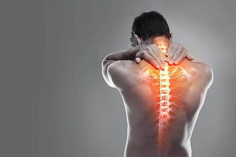 мускулите на гърба